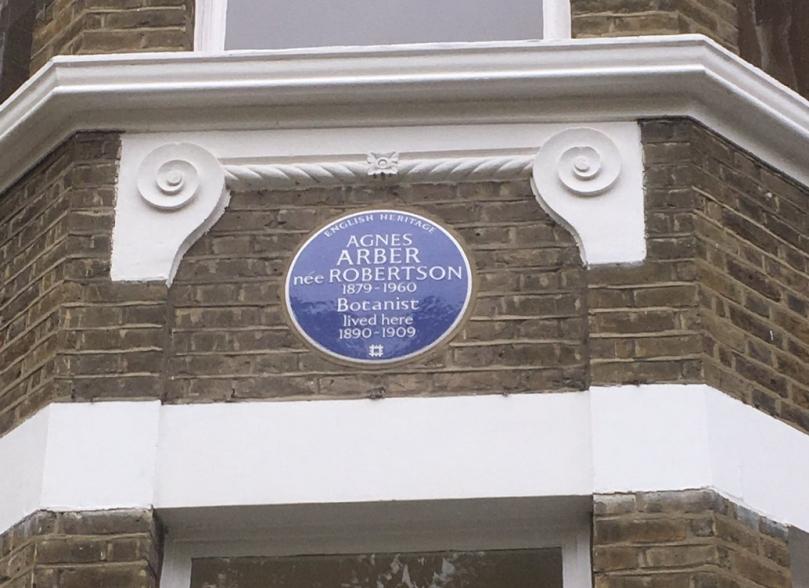 Arber plaque